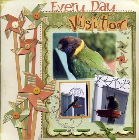 everydayvisitor